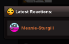 the meanie sturgill collab