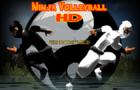 Ninja Volleyball HD