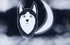 Nightsky Husky