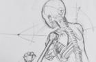 WKS Skelett