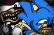 Sonic too fast? (Sonic Parody)