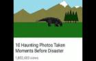 Dinosaur Stampede Disaster