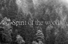 Spirit of the wood