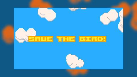 Save The Bird!