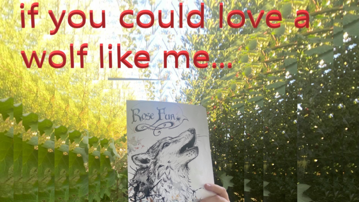 if you could love a wolf like me...
