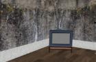 EGGGS ( CREEP TV ) [ three butterflies make three butterflies ]