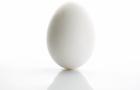 Egg Bouncer