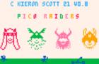 Pico-Raiders