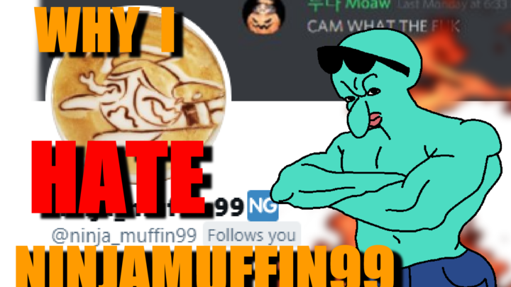 why i fraking DESPISE ninjamuffin99