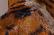 loop: Tiger time