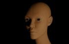 daggerfall intro facial animation training
