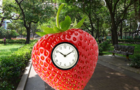 StrawberryClock Goes to the Park