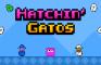 Hatchin' Gatos
