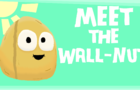 Meet the Wall-nut (plants vs zombies animation)