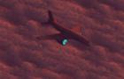 flight 2121